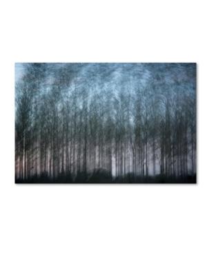 """Geoffrey Ansel Agrons 'Verschrankung' Canvas Art - 24"""" x 16"""" x 2"""""""