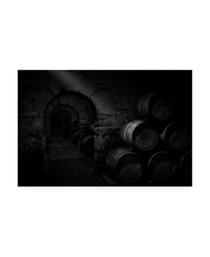 "Martin Zalba Wine Cellar Canvas Art - 20"" x 25"""
