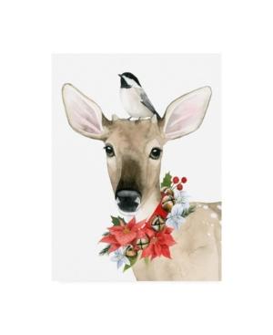 """Grace Popp Deer Christmas Ii Canvas Art - 20"""" x 25"""""""