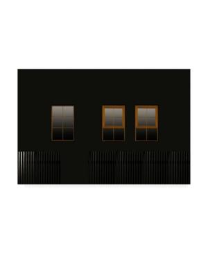 """Inge Schuster Windows in the Dark Canvas Art - 20"""" x 25"""""""