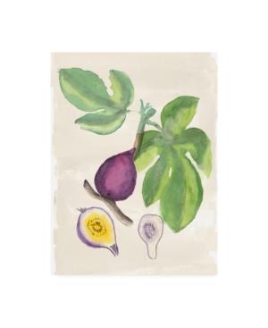 "Naomi Mccavitt Watercolor Fruit I Canvas Art - 15"" x 20"""