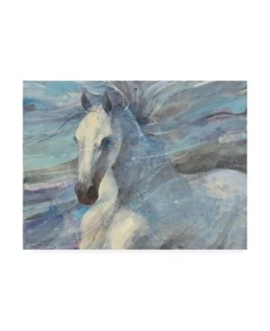 "Albena Hristova Poseidon White Horse Canvas Art - 27"" x 33.5"""