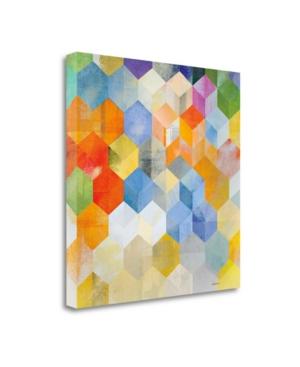 """Tangletown Fine Art Cubitz Ii by Noah Fine Art Giclee Print on Gallery Wrap Canvas, 30"""" x 30"""""""
