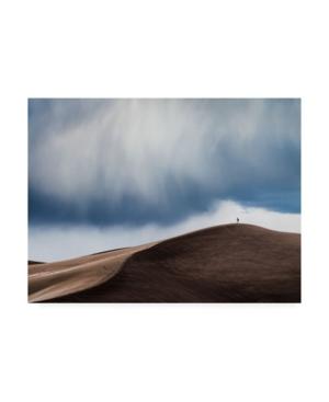 "John Fan Storm Chaser Desert Canvas Art - 37"" x 49"""