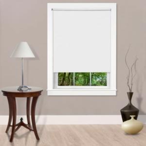 Cords Free Tear Down Light Filtering Window Shade, 55x72