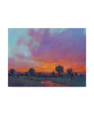 "Tim Otoole Fiery Sunset I Canvas Art - 15"" x 20"""