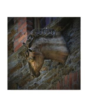 "Christine Sainte-Laudy Stone Horse Canvas Art - 15"" x 20"""