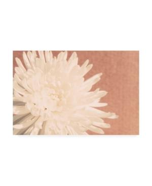 "Jason Johnson Floral Canvas Art - 27"" x 33.5"""