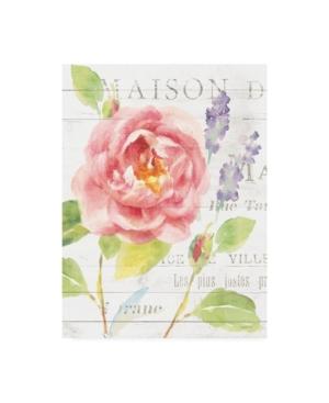 "Danhui Nai Maison Des Fleurs Iii Canvas Art - 20"" x 25"""