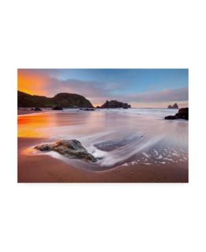 "Darren White Photography Citrus Sunrise Canvas Art - 19.5"" x 26"""