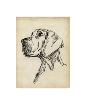 "Ethan Harper Breed Studies Vi Canvas Art - 15.5"" x 21"""