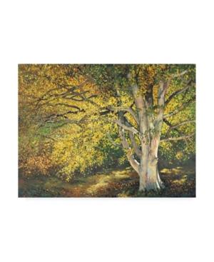 "Graham Reynolds Golden Light I Canvas Art - 20"" x 25"""