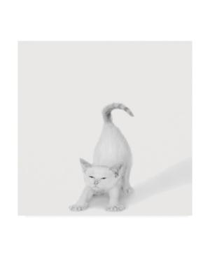 "Jon Bertell Bonjour! Canvas Art - 15.5"" x 21"""