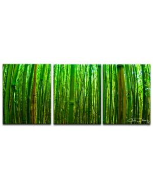 Ready2HangArt 'Maui Palms' 3-Pc. Canvas Art Print Set