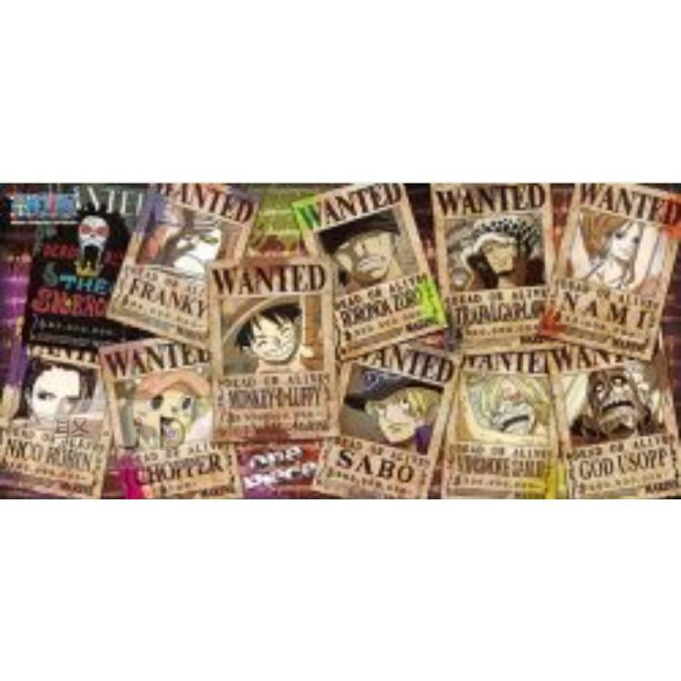 【P2 拼圖】HP0510-027 海賊王懸賞 (塗鴉版) 510 片盒裝拼圖