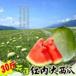 【禾鴻】花蓮清涼消暑大西瓜30斤x2顆