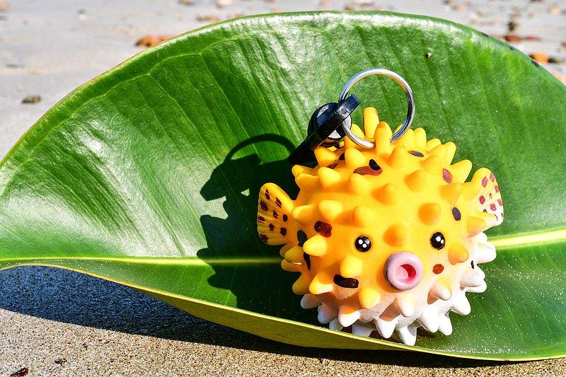 刺魚備用調節器保護套(潛水)