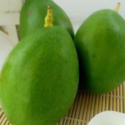 台灣酪梨一袋(600公克~800公克)(軟就可吃)