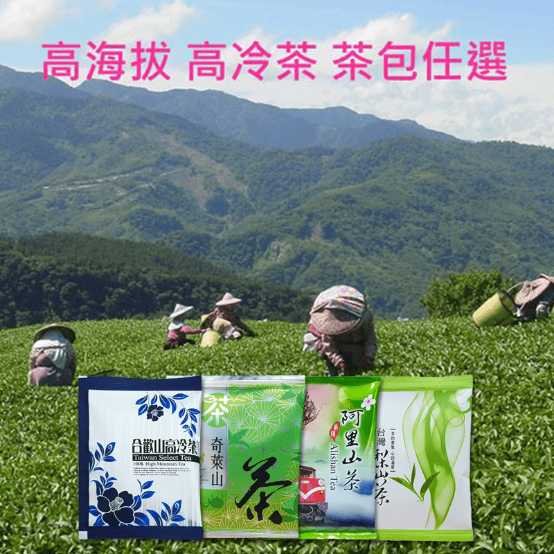 【新造茗茶】精選梨山高冷茶極品袋茶包TEA038-1