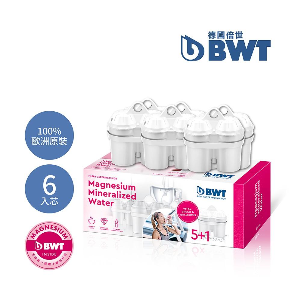 【BWT德國倍世】Mg2+鎂離子濾芯 (5+1入)