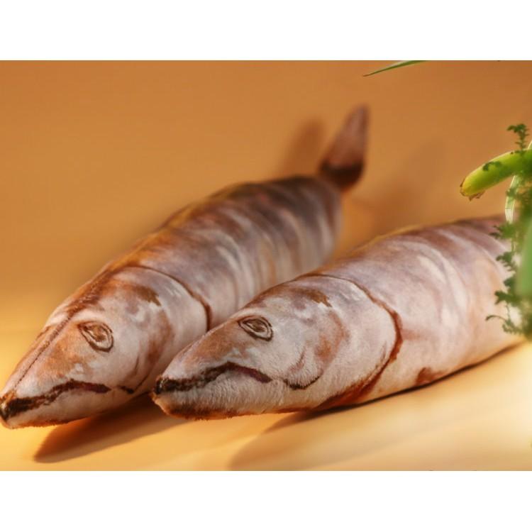 BANG 鹹魚抱枕 鹹魚 玩偶 交換禮物 魚 生日禮物 惡搞 療癒禮物【HL08】