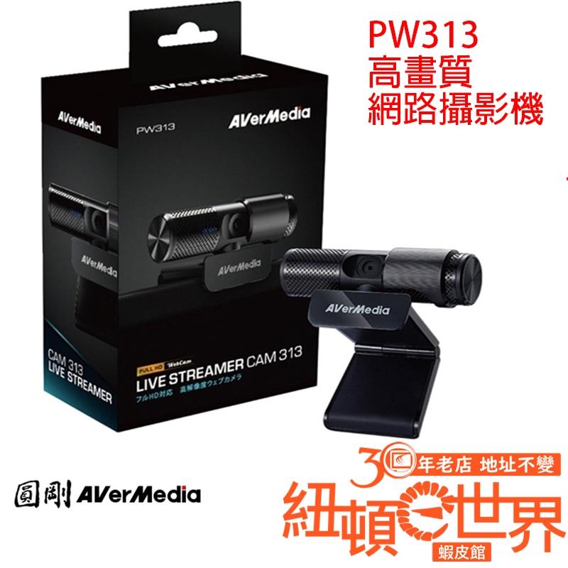 AVerMedia 圓剛 Live Streamer CAM PW313 高畫質網路攝影機 紐頓e世界