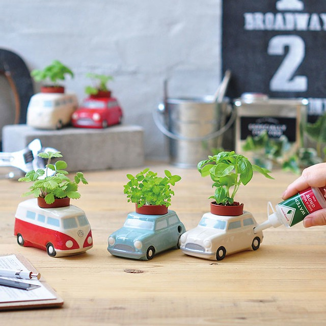 Auto Plants Car 復古車水耕植栽盆器 / 麵包車 (日本正版授權/老爺車/香草植物/水耕/不易長蟲)