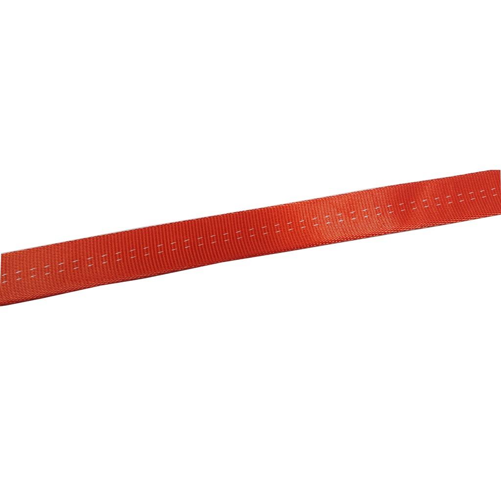 台灣 BR 金絲傘帶 AG25 (台灣製造) 橘色(50米)