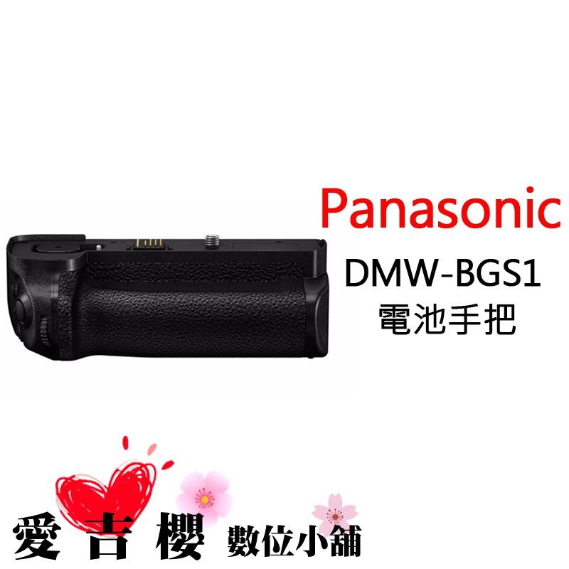 Panasonic DMW-BGS1 原廠 電池手把 公司貨 全新 免運 適用 S1H S1R S1M BGS1E 手把
