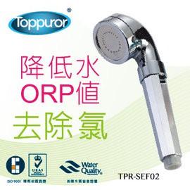 【泰浦樂 Toppuror】烤漆銀能量沐浴器 TPR-SEF02