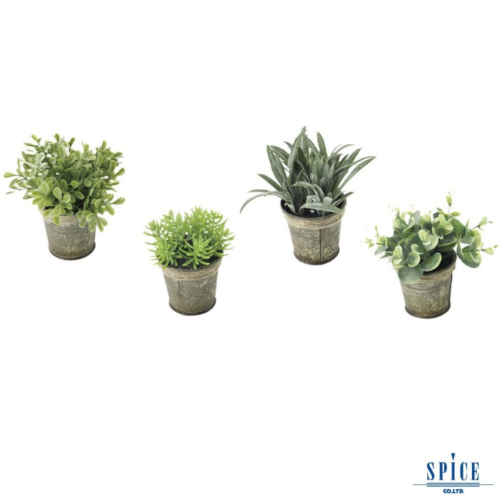 日本雜貨 仿舊白鐵皮盆栽人造綠色植物-4種組 裝飾花 假花 假盆栽 假植物 人造盆栽 網美道具