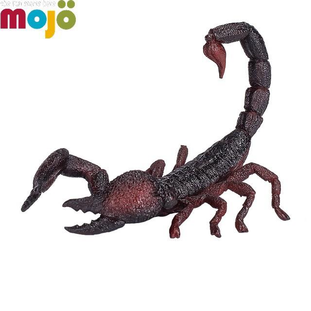 Mojo Fun動物模型-帝王蠍