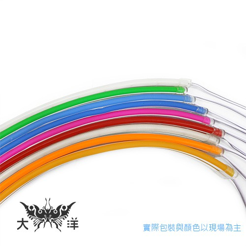 12V LED柔性霓虹彩虹燈條 5M 白/暖白/藍/冰藍/紅/粉紅/金黃/橘/綠 1398 大洋國際電子