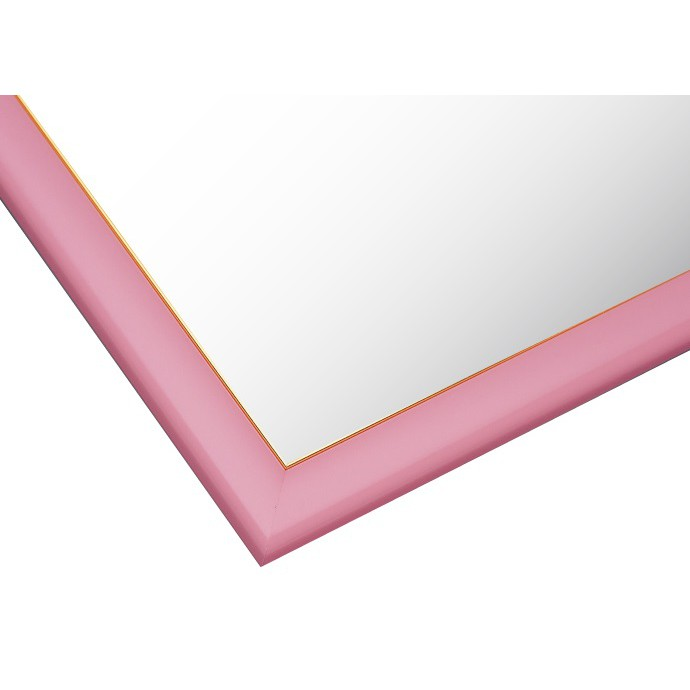 Beverly  粉紅色金線14號框  49X72cm  拼圖總動員  木框  日本進口