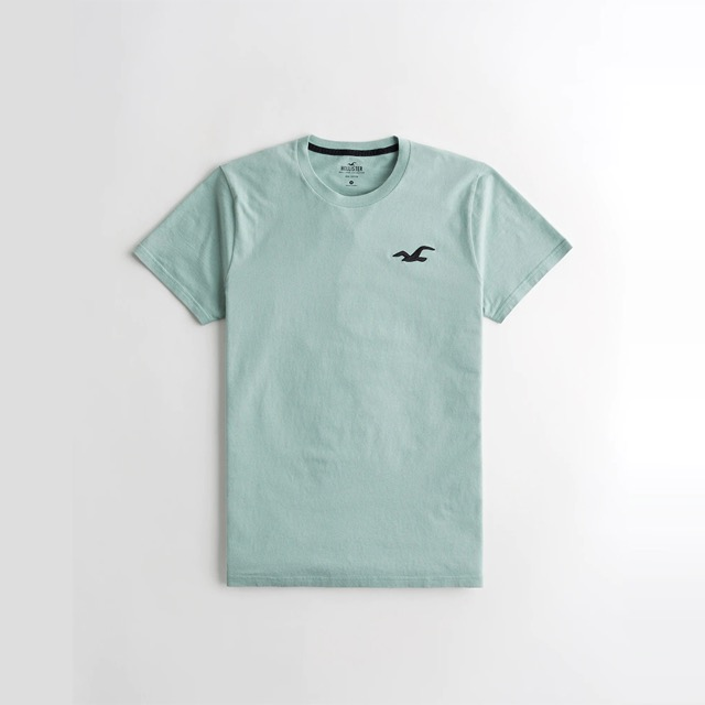 Hollister 海鷗  經典刺繡大海鷗素面短袖T恤-淺綠色