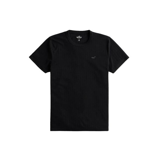 Hollister 海鷗  經典刺繡海鷗素面短袖T恤-黑色
