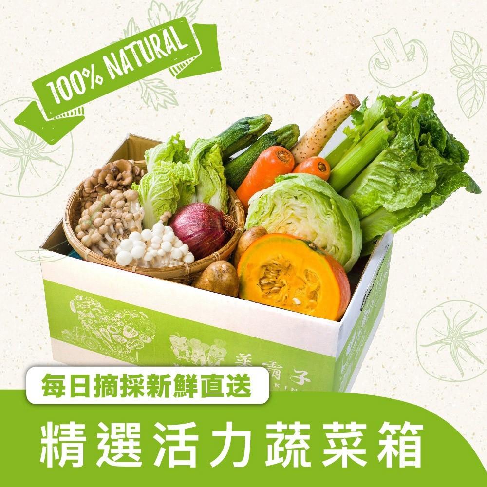 菜霸子 健康蔬菜超值組合箱 防疫免出門 新鮮蔬菜箱送到家 廠商直送