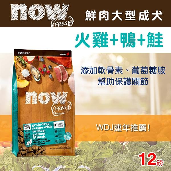 【毛麻吉寵物舖】Now! 鮮肉無穀天然糧 大型成犬配方-12磅-狗飼料/WDJ推薦/狗糧