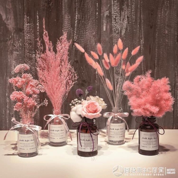 干花花束裝飾擺件滿天星永生花粉黛天然真花棉花網紅家居客廳擺設