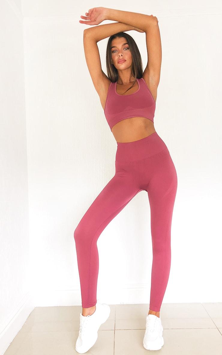 Rose High Waist Seamless Gym Leggings