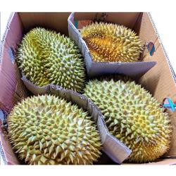 【水果行家】金枕頭榴槤_原裝箱3~4顆入/箱