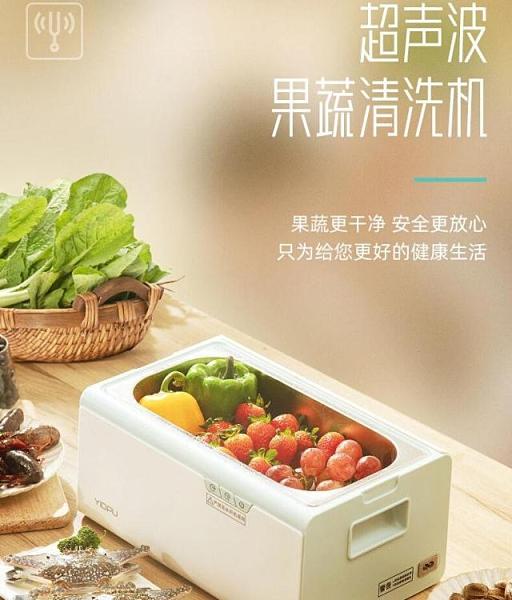 超聲波清洗機 日本果蔬清洗機家用超聲波消毒清洗機水果海鮮食材凈化機全自動220V 快速出貨