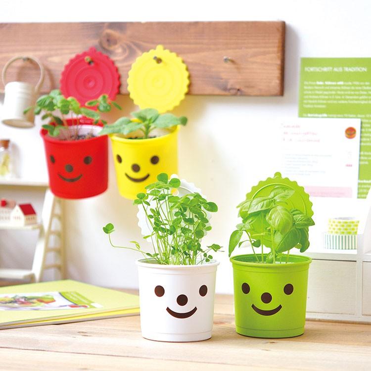 Smile Smile 微笑療癒可掛式植栽盆器 (笑臉/微笑/盆器/開罐造型/日本授權/向日葵/辦公室小物)