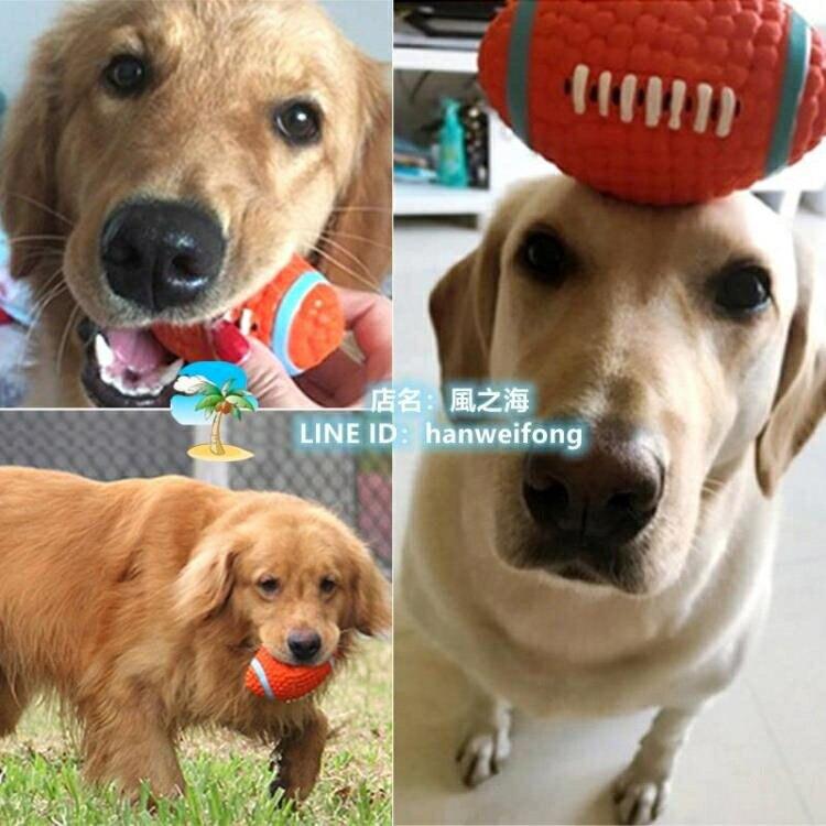 貓玩具狗玩具狗狗玩具球耐咬磨牙發聲玩具幼犬大型犬寵物玩具橄欖球足球排球網球 千尋之旅