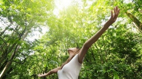 How Yoga Nidra and Forest Bathing Show Us Our Enoughness
