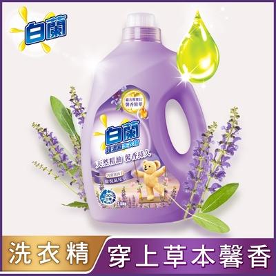 白蘭 含熊寶貝馨香精華愉悅鼠尾草洗衣精瓶裝2.5KG