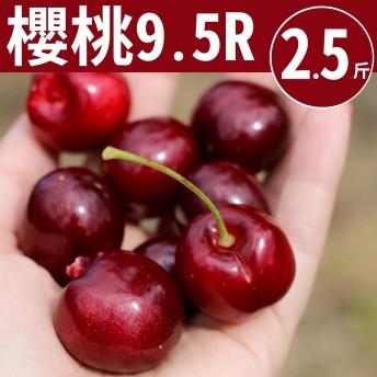 【甜露露】華盛頓櫻桃9.5R 2.5斤(2.5台斤±10%)